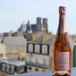 champagne-rose-cathedrale1